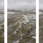 Burning Bright: Gibson-Cowan's Fearful Symmetry at the blackShed Gallery by  Julia Mortimer