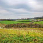 Solar Farm Projects Get  Cautious Go-Ahead