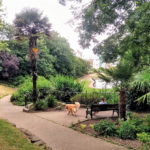 Hastings Parks Recognised As Some Of The UK's Very   Best Green Spaces