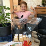 Volunteers needed for Get Growing's free grow-your-own project