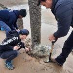 Sea Shepherd Removes Hazards from Bexhill Beaches